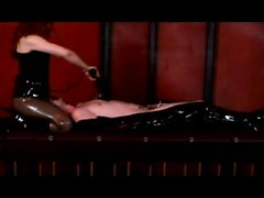 Dominatrix Mistress Gemini ties up his nuts and he kisses her ass