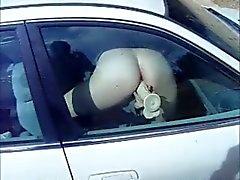 Dildo car window