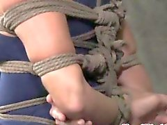 Box tied bondage treatment for the milf