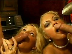Amazing European babes like to get banged